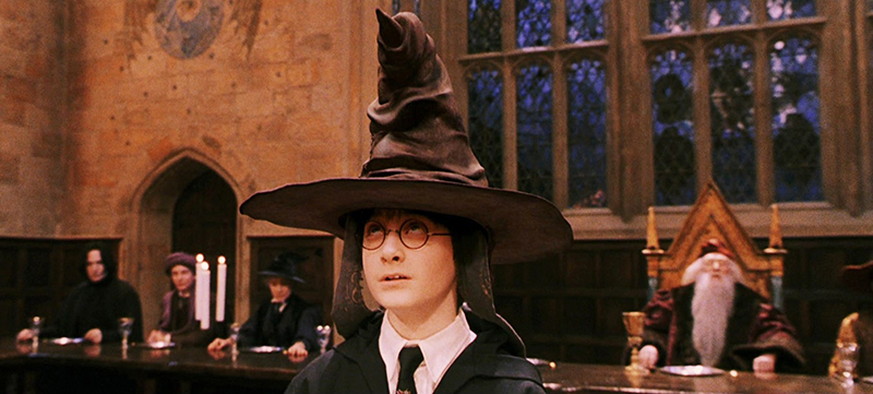 Which Hogwarts house would your CEO belong to?